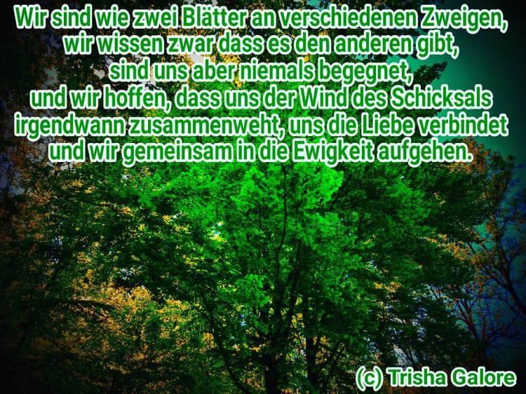 tumblr_opzreboXgD1w19w7ko1_1280