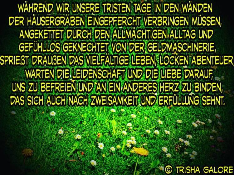 tumblr_oq5cvlcNFx1w19w7ko1_1280