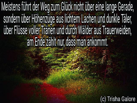 tumblr_oqxex7VzVy1w19w7ko1_540